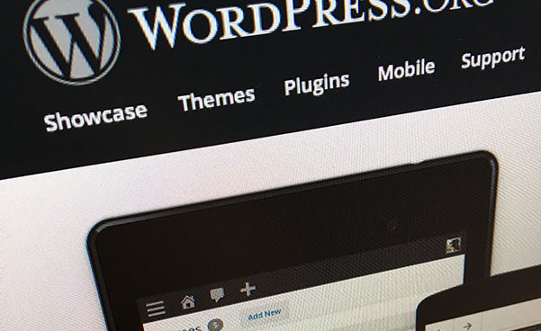 Optimize your WordPress Database